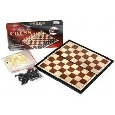 Šachmatai su magnetine lenta